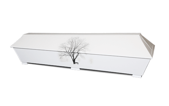 Verhoiltu ekologinen kuva arkku